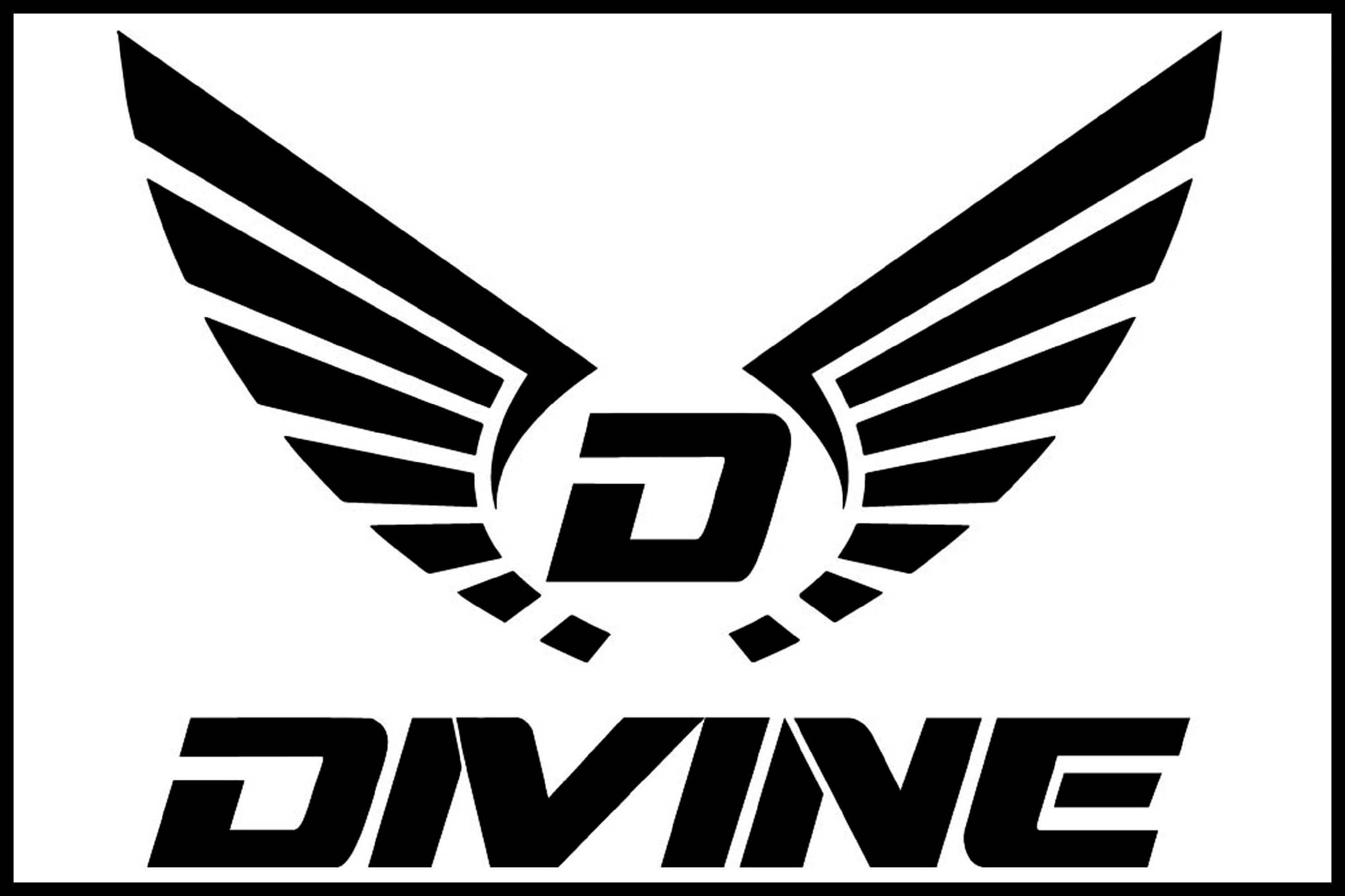 Divine Black Logo | Divine Cycling